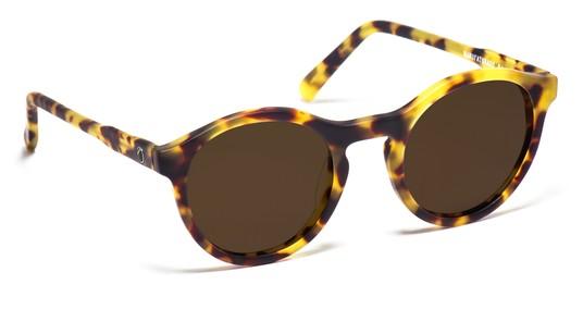 295c49774 Zerezes - Óculos de Sol e Grau - Encontre sua armação